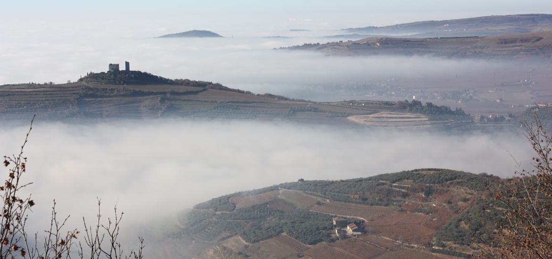 View from Col de la Bastia vineyard to Illasi valley